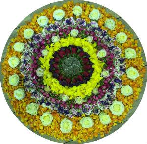 Mandala-Ihr Lebenskreis